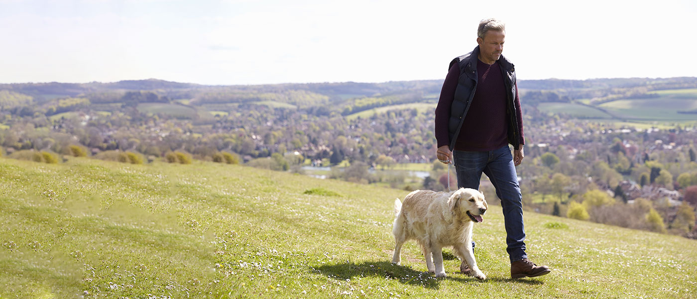 Cotswold Dog Walking man and his dog